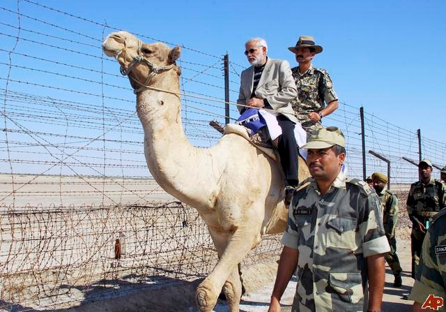 modi rocked the camel
