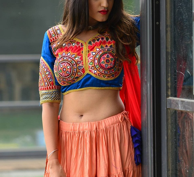new navratri blouse pattern from surat suppliers
