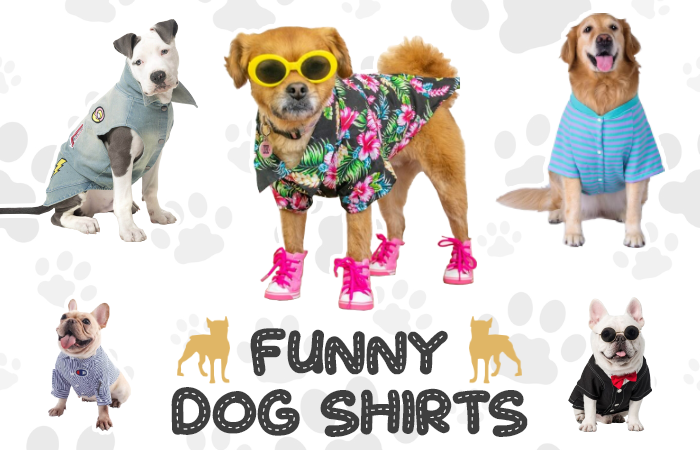 cool shirts for dogs