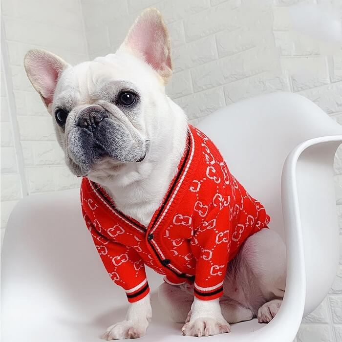 dog clothes patterns for sale