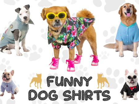 Dog Shirts Patterns – Funny and Creative Ideas